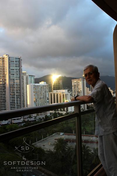 Hawaiihirtnasa
